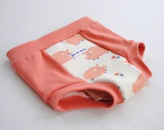 Organic Eco-Training,Organic Training Underwear,Training pants,2T-3T,Boys Underwear,Girls Underwear