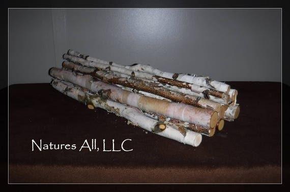 Decorative White Birch Sticks/Birch Sticks/20 Inch Lengths/12 Piece White Birch Set/Rustic Home Decor/Shipping Included