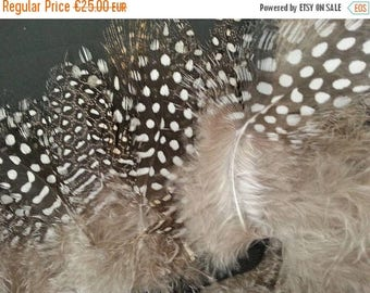 SUMMER17 Feathers of Guinea fowl on satin ribbon