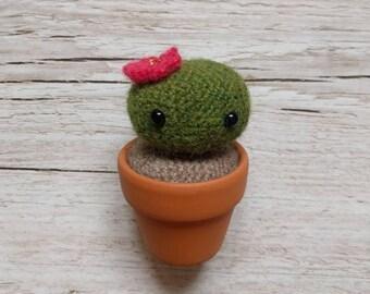 Cactus Crochet Amigurumi