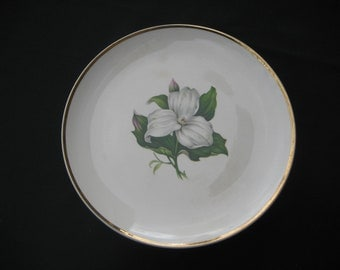 """6-!0"""" Limoges-American Dinner Plates, Trillom White Glamour w/22k accents"""