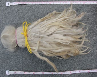 2,5 oz Natural raw white suri alpaca locks
