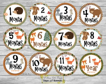 Woodland Forest Friends Baby Clothing Monthly Milestone Stickers