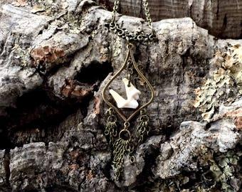 Coyote Tooth Teardrop Necklace - Bone - Taxidermy - Oddity