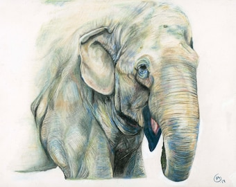 Happy Lucky Elephant Fine Art Print