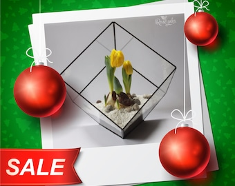 NY Discount -10% / Geometric Terrarium / Big Cube / Stained Glass Terrarium / Handmade Glass Planter / Stained glass vase