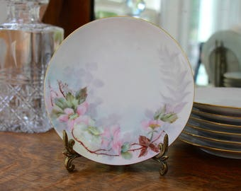 Six Hand Painted Bavarian Plates