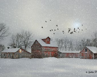 Winter Farm # 289
