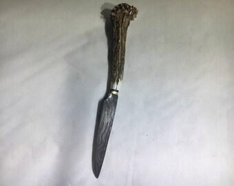 Damascus neck knife