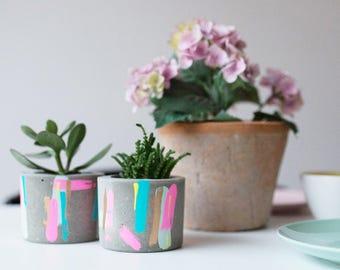 Bon Concrete Pot With Succulent Plant