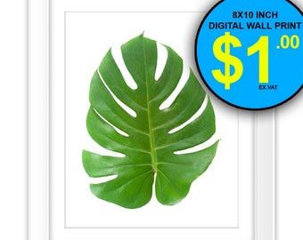 Tropical Leaf Photo Wall Art Print, 8x10 Inch, Instant Download, Digital Print