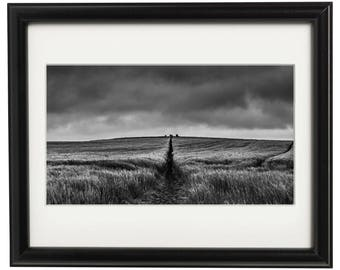 Duddo Stones in field, Autumn, Monochrome, Northumberland Landscape Photograph. Wall Art.