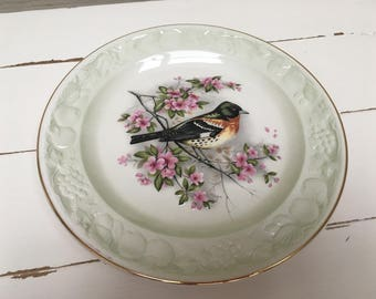 ROYAL WORCESTER SPODE palissy finch decorative plate.