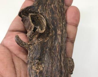 Rare Agarwood Piece