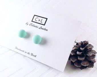Blue Studded Earrings