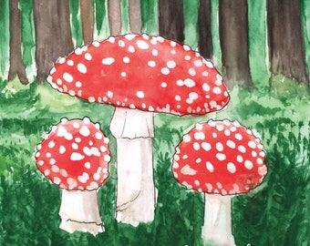 The mushrooms postcard