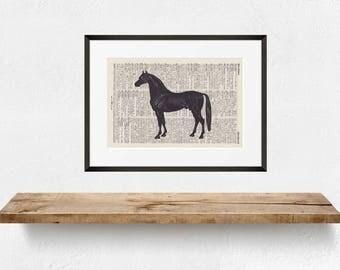 Printing BLACK HORSE - antique book page - landscape
