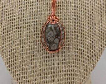 Turritella fossil cabochon wrapped in copper wire
