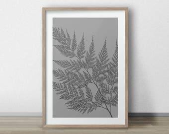 Botanical Wall Art fern print botanical wall art gift for her fern illustration