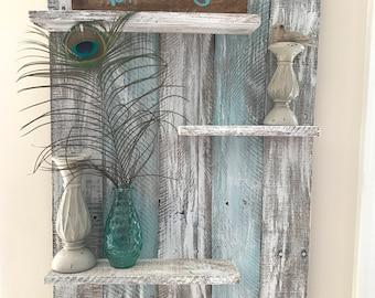Custom Shelf for Shakti