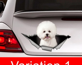 Bichon frise car Decal, Bichon frise sticker ,pet  Decal, dog decal, Car Decal, funny decal, Laptop Decal, 3D sticker