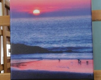 Pink Sunset Canvas