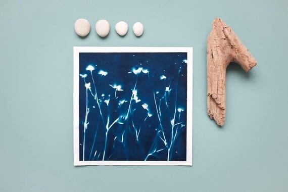 """Original Cyanotypie """"Sumpfdotterblumen"""" auf Hahnemühle Skizzenpapier im quadratischen Format (21 x 21 cm)"""