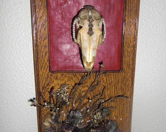 Decorated and Mounted Bunny Skull