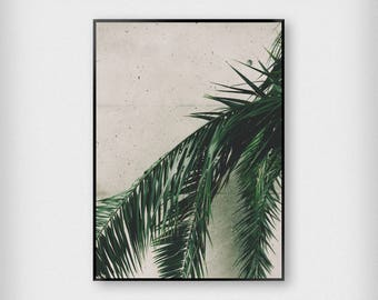 Hanging Leaves Print | Botanical | Green | Tropical - Palm Tree - Poster