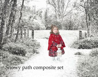 Snowy path winter digital backdrop. A Set of 5 elements for composite Christmas photos. Winter path + snow overlays and a sparkle abr brush
