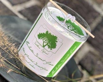 Charleston Sweet Grass 11.25 ounce Single Wick Candle