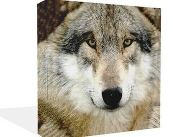 Wolf Face Close Up Animal Canvas Wall Art Print Ready to Hang