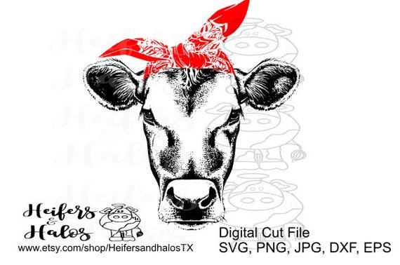 Bandana Heifer Cow Svg Pdf Png Eps Dxf Studio3 Cut