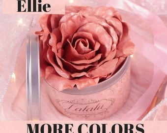 Rose Highlighter Makeup Ellie Highlighter Infused Rose Duo Chrome Rose Gold, Gold Highlight, Mineral Makeup, Vegan Makeup, Gift for Her