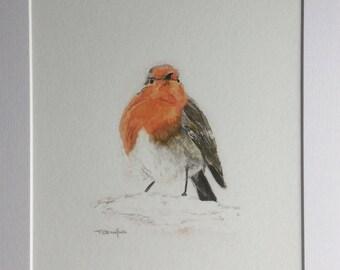 robin print, fine art giclee print, garden bird art, watercolour painting, gift for her, shabby chic art, Christmas present, Robin lover