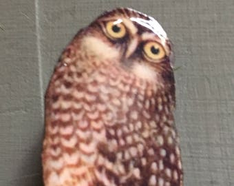 Brooch, Wise Old Owl Bird