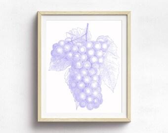 Grape Art Print, Fruit Print, Kitchen Decor, Wine Art, Grape Decor, Nature Print, Botanical Print
