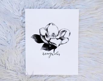 Magnolia Bloom / Flower / Hand Drawn