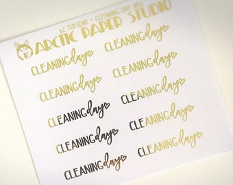 Cleaning Day (NS)- FOILED Sampler Event Icons Planner Stickers