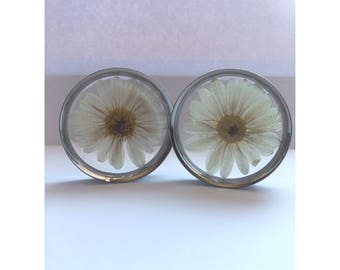 Large white daisy flower plugs, ear guages, ear stretchers, ear plugs.