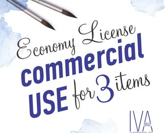 Economy License for Commercial use for 3 Items