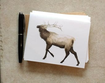 Elk 5 Piece American Woodland Greeting Card/Note Card Set