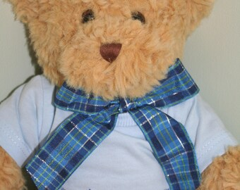 Toy Teddy Bear With Personalised Blue T-Shirt