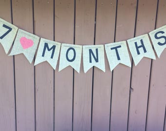 Pregnancy Tracker - Baby Month Tracker - Baby Photo Prop - Pregnancy Photo Prop - Pregnancy Months - Baby Months