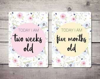 Baby Milestone Cards, Floral, Baby Shower
