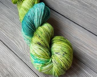 Ribbit Glam hand dyed yarn