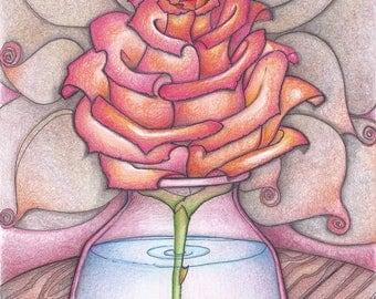 Rose in glass jar
