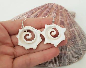 Turbo piece Seashell Earrings/cut shell turbo earrings