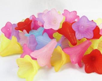 50 flowers multicolored acrylic Petunias