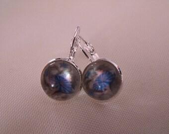SALE earrings cabochon 12mm blue floral